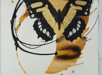 balance-butterfly