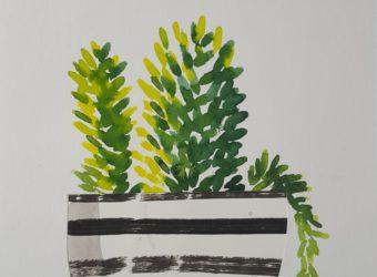 small plant 2