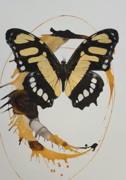 butterfly-paper-420x600